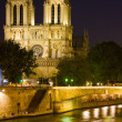 Notre Dame de Paris at a dark night — Stock Photo