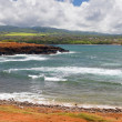 Coast on Kauai island — Stock Photo