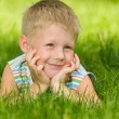 Boy imagines on the green grass — Stock Photo #33985379