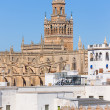 Cathedral of Saint Mary of the See in Seville — Stock Photo