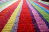 Colors, carpet — Stock Photo