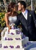 Cutting the wedding cake — Stock Photo