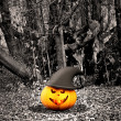Halloween background with pumpkins and trees - Stock Photo