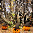 Halloween background with pumpkins and trees — Stock Photo