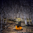 Halloween background with pumpkins and trees — ストック写真