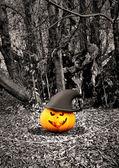 Sfondo di Halloween con zucche e alberi — Foto Stock