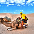 Man on camel in the Sahara desert — Stock Photo