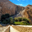 Canyons - Chebika, Tunisia — Stock Photo