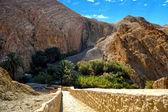 Canyons - Chebika, Tunisia — Stock Photo