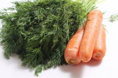 Carrots and greens — Stock Photo