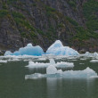 Stock Photo: Icebergs from the North Sawyer Glacier in the Tracy Arm in Alaska