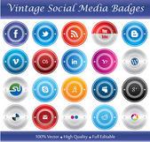 Vintage Social Media Badges — Stock Vector