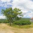 Hayfield, barn and mountain panorama — Stock Photo