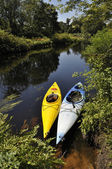 Kayaking in the wilderness — Stock Photo
