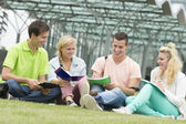 Four students learning while sitting on the ground — Stock Photo
