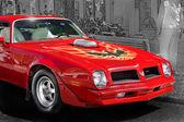 1978 Pontiac Trans Am — Foto de Stock