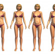 Foto de Stock  : Weight Progression: Underweight to Overweight