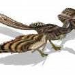 Archaeopteryx - Prehistoric Bird - Stock Photo