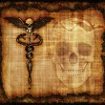 Skulls, Sankes and Bat Parchment — Stock Photo #14220477