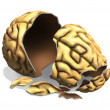 Brain Damage — Stock Photo