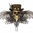 Steampunk Skull — Stock Photo