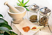 Officinal herbs — Stock Photo
