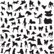 Large collection of different silhouettes of dogs — Imagens vectoriais em stock