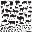 Stock Vector: Silhouettes of animals