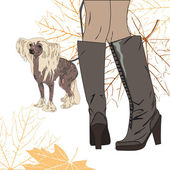 For a walk with the dog — Stock Vector