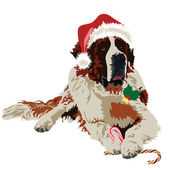 Saint Bernard in hat santa claus — Stock Vector