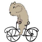 Hamster on a bike — Stock Vector