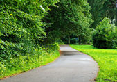 Asphalt road turning — Stock Photo