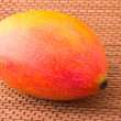 One mango fruit — Foto Stock