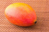One mango fruit — Stock Photo