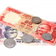 Indian currency — Stock Photo #30307475