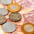 Indian currency — Stock Photo #30307659
