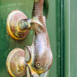 Traditional door handle, Malta — Stock Photo #30973391