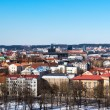 Stock Photo: Vilnius view