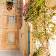 Mdina courtyard with fuchsiaflowers, malta — Stock Photo