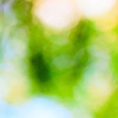 šťastnou povahu bokeh — Stock fotografie