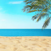 Vista della spiaggia tropicale — Foto Stock