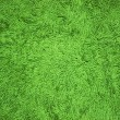 Carpet — Stock Photo #30879483