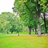 Park on sunny day — Stock Photo
