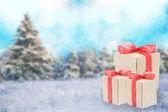Zimní dovolená — Stock fotografie