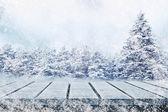 Pré hiver — Photo