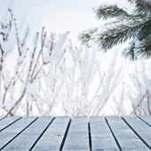 Winter scene — Foto Stock