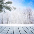 Winter scene — Stock Photo #37971853
