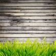 Grass near wall — Stock Photo