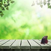 Mesa de picnic — Foto de Stock