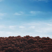 Soil on sky background — Stock Photo